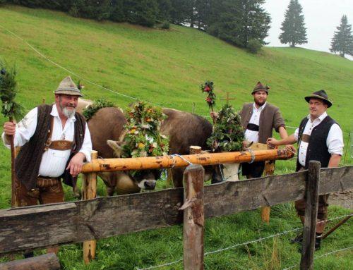 Viehscheid in Zell, viele Besucher, schöne Kranzrinder und eine Marschpremiere