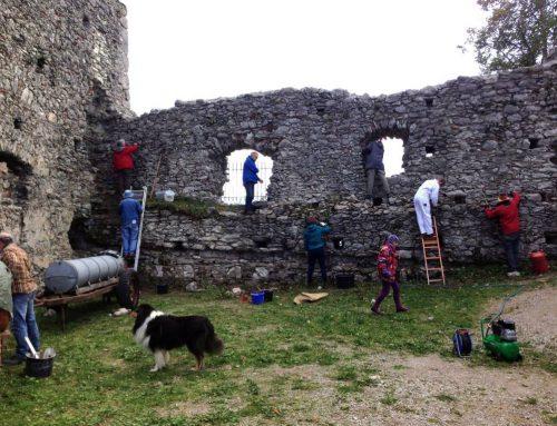 Seminar für Burgenforschung mit praktischer Arbeit auf Hohenfreyberg