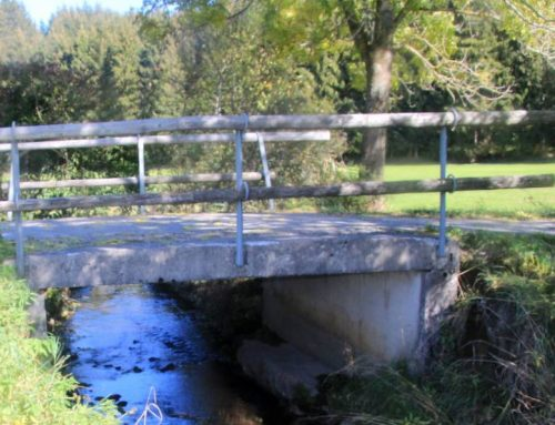 Infoabend über Gewässerschutz in Eisenberg Schwerpunkt Dolder Bach